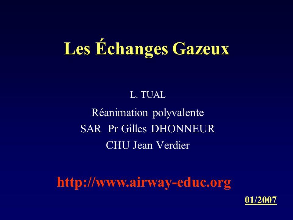 Les Échanges Gazeux L. TUAL Réanimation polyvalente SAR Pr Gilles DHONNEUR CHU Jean Verdier 01/2007 http://www.airway-educ.org
