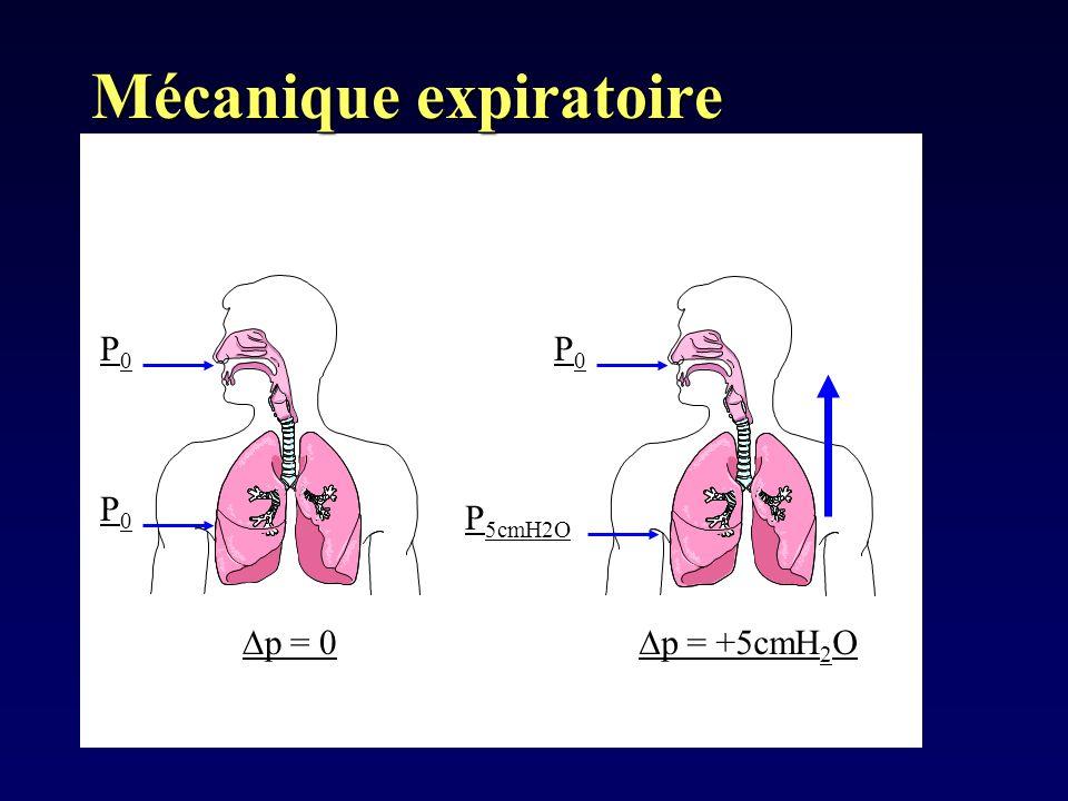 Lors de lexpiration, les forces de rétraction pulmonaire sont supérieures à celles de dilatation thoracique donc le volume du système thoraco-pulmonaire diminue Si V 2 alors P 2 P0P0 P0P0 P0P0 P 5cmH2O p = 0 p = +5cmH 2 O Mécanique expiratoire