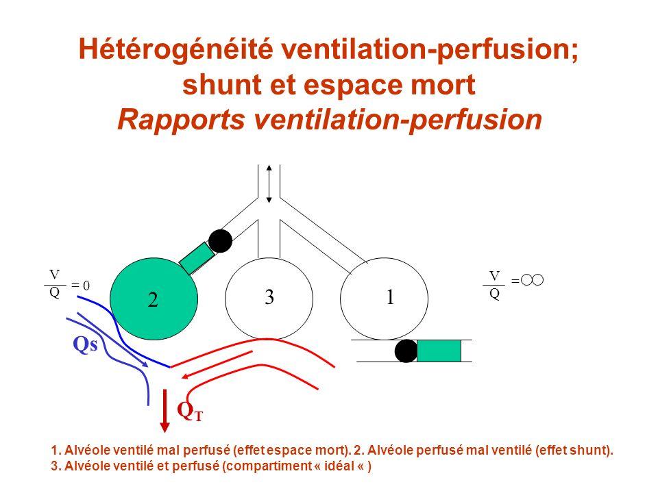 Hétérogénéité ventilation-perfusion; shunt et espace mort Rapports ventilation-perfusion 2 31 VQVQ = 0 VQVQ = 1. Alvéole ventilé mal perfusé (effet es