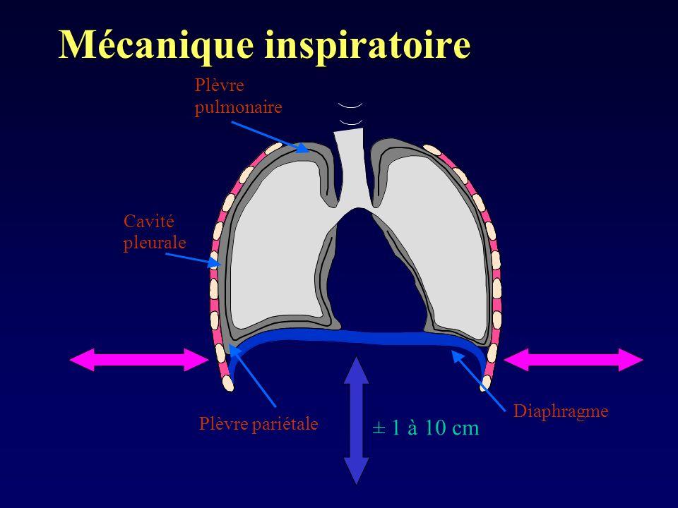 Mécanique inspiratoire Léquation des gaz parfaits: P 1 V 1 = P 2 V 2 = constante Si V 2 alors P 2 P0P0 P0P0 P0P0 P -5cmH2O p = 0 p = -5cmH 2 O