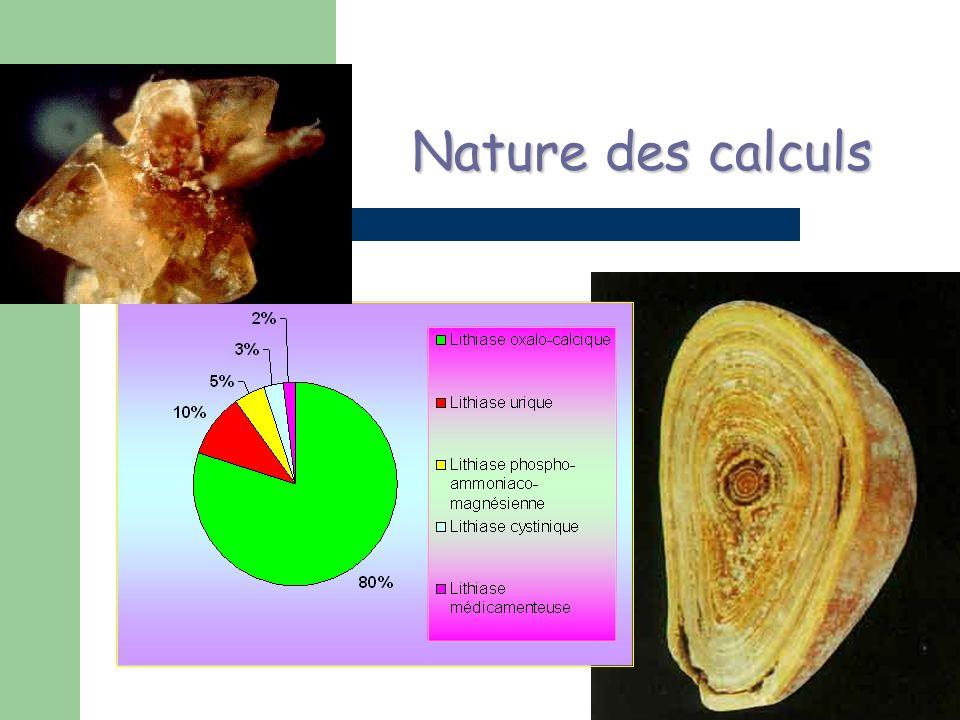 Nature des calculs