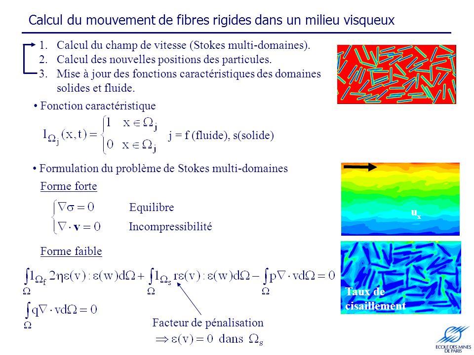 Calcul du mouvement de fibres rigides dans un milieu visqueux uxux Taux de cisaillement Formulation du problème de Stokes multi-domaines j = f (fluide), s(solide) Facteur de pénalisation 1.Calcul du champ de vitesse (Stokes multi-domaines).