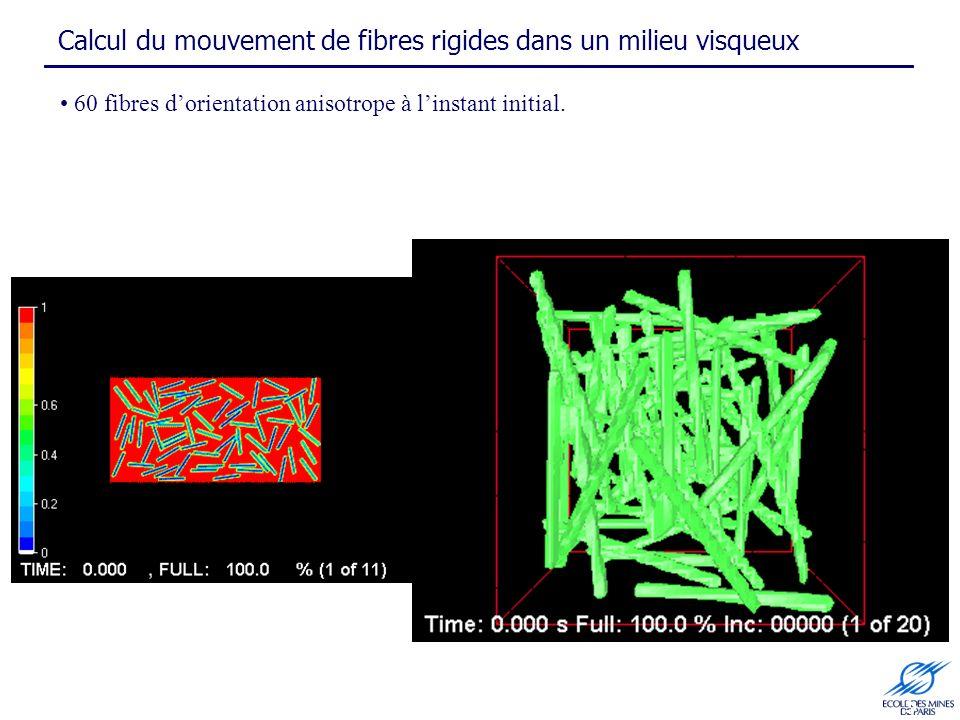 Calcul du mouvement de fibres rigides dans un milieu visqueux 5 60 fibres dorientation anisotrope à linstant initial.