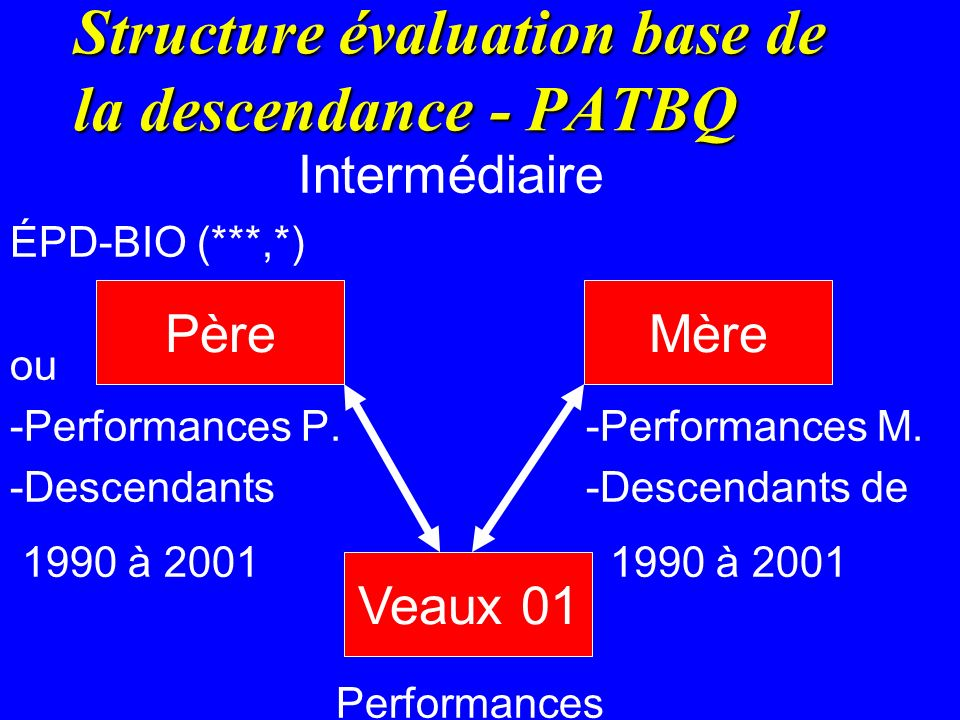 Structure évaluation base de la descendance - PATBQ Intermédiaire ÉPD-BIO (***,*) ou -Performances P.-Performances M. -Descendants -Descendants de 199