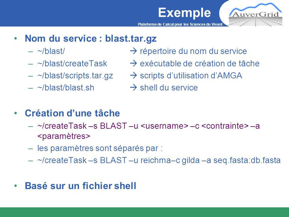 Exemple Nom du service : blast.tar.gz –~/blast/ répertoire du nom du service –~/blast/createTask exécutable de création de tâche –~/blast/scripts.tar.gz scripts dutilisation dAMGA –~/blast/blast.sh shell du service Création dune tâche –~/createTask –s BLAST –u –c –a –les paramètres sont séparés par : –~/createTask –s BLAST –u reichma–c gilda –a seq.fasta:db.fasta Basé sur un fichier shell