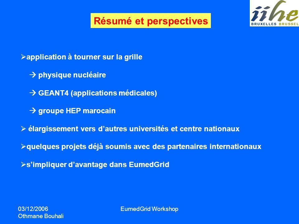 03/12/2006 Othmane Bouhali EumedGrid Workshop Résumé et perspectives application à tourner sur la grille physique nucléaire GEANT4 (applications médic