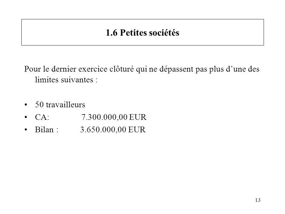 13 1.6 Petites sociétés Pour le dernier exercice clôturé qui ne dépassent pas plus dune des limites suivantes : 50 travailleurs CA: 7.300.000,00 EUR B