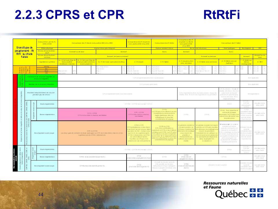 44 RtRtFi2.2.3 CPRS et CPR