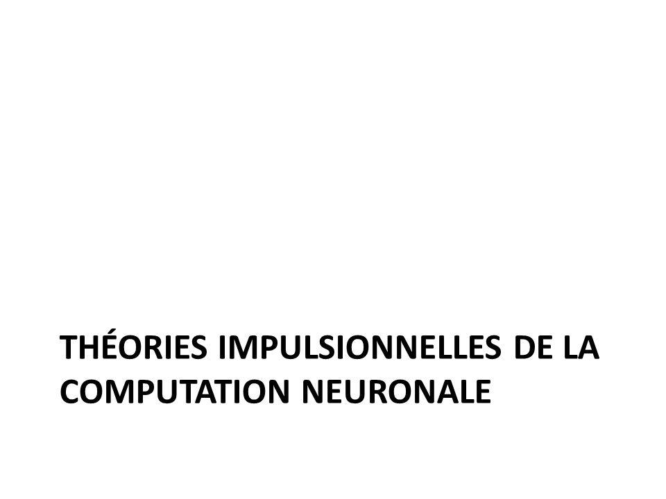 THÉORIES IMPULSIONNELLES DE LA COMPUTATION NEURONALE