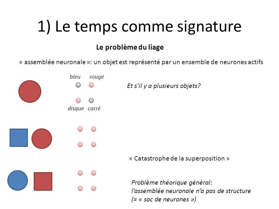 1) Le temps comme signature Le problème du liage « assemblée neuronale »: un objet est représenté par un ensemble de neurones actifs Et sil y a plusie
