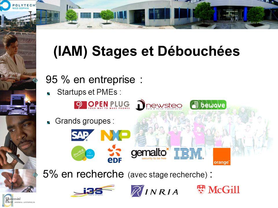 (IAM) Stages et Débouchées 95 % en entreprise : Startups et PMEs : Grands groupes : 5% en recherche (avec stage recherche) :