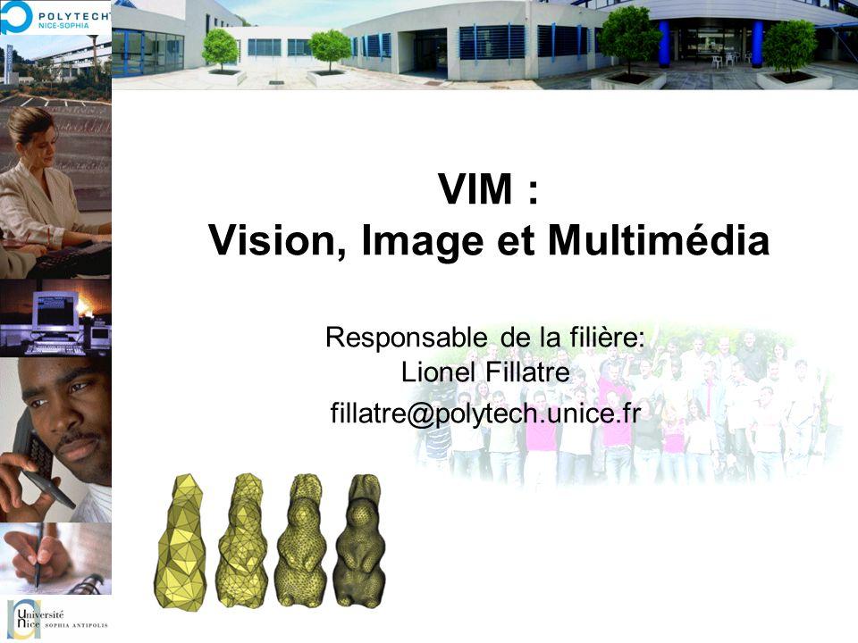 VIM : Vision, Image et Multimédia Responsable de la filière: Lionel Fillatre fillatre@polytech.unice.fr