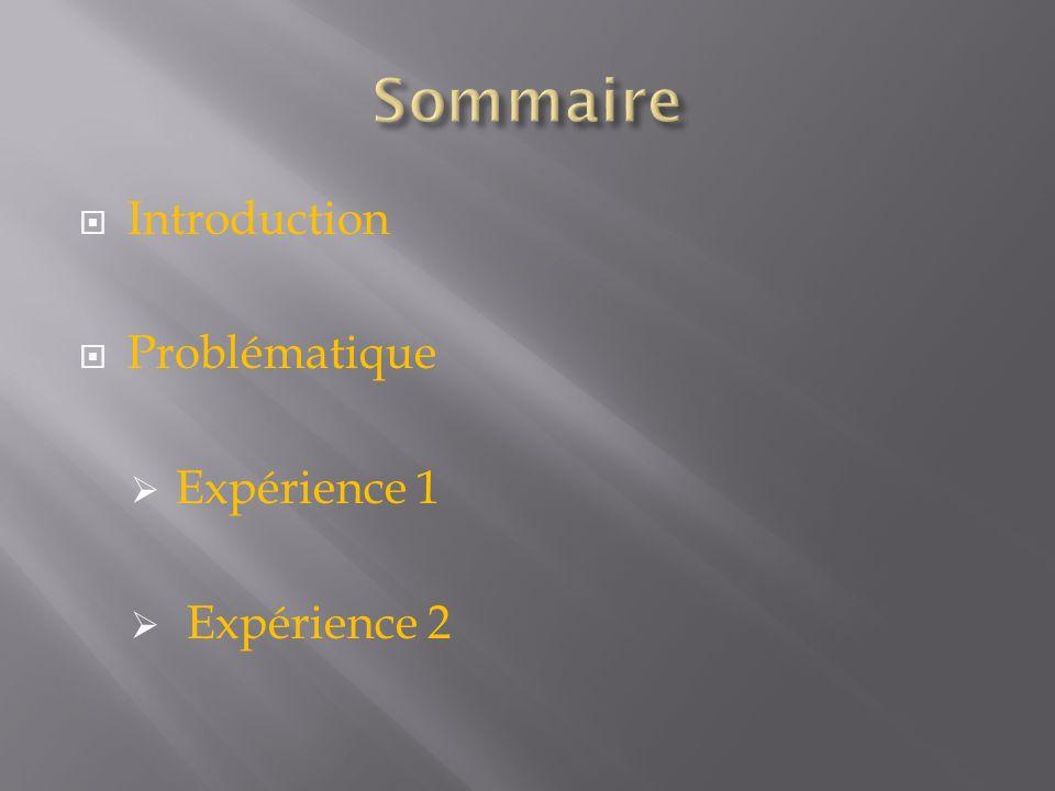 Introduction Problématique Expérience 1 Expérience 2