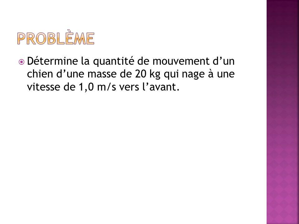 Détermine la quantité de mouvement dun chien dune masse de 20 kg qui nage à une vitesse de 1,0 m/s vers lavant.