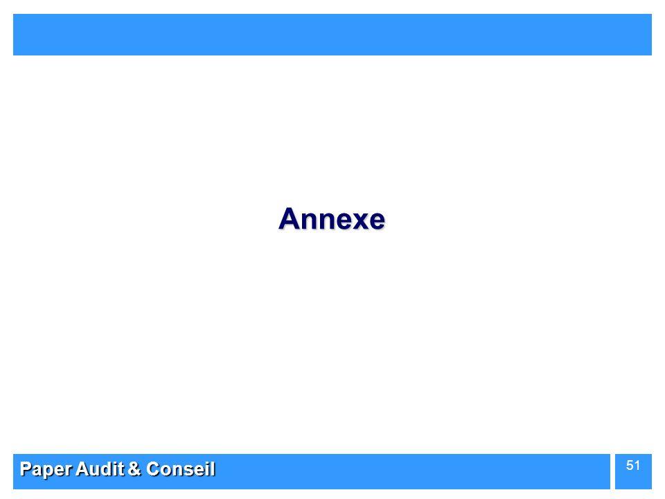 Paper Audit & Conseil 51 Annexe