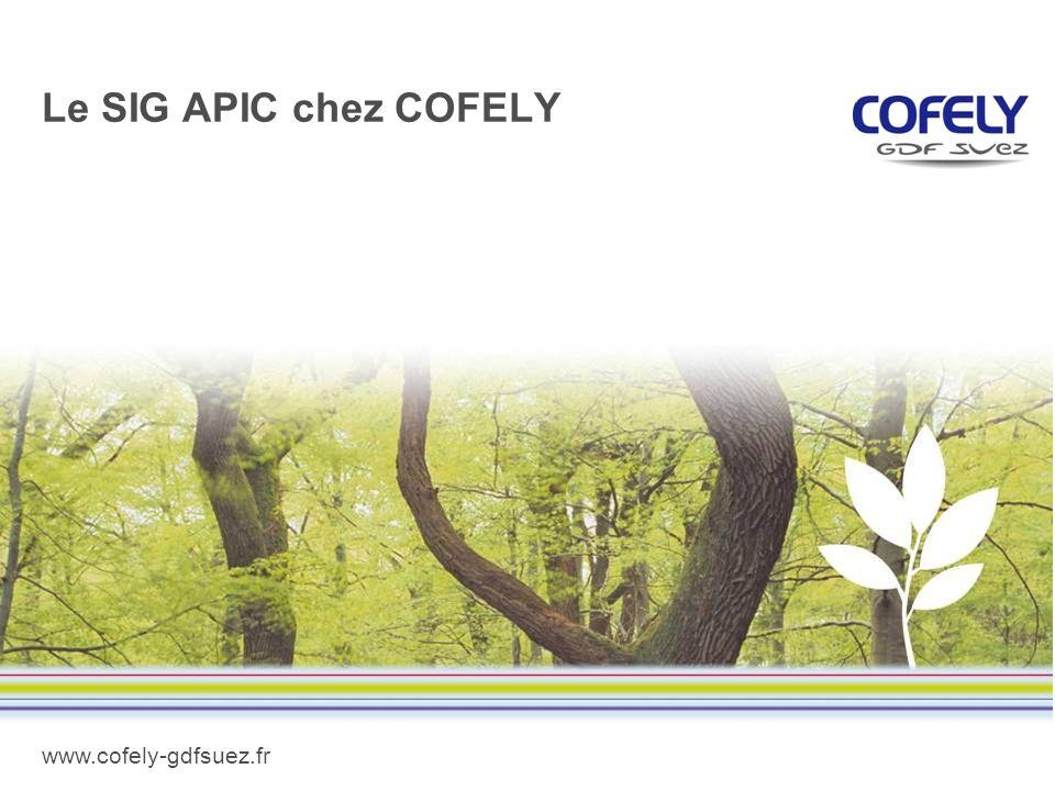 www.cofely-gdfsuez.fr Le SIG APIC chez COFELY