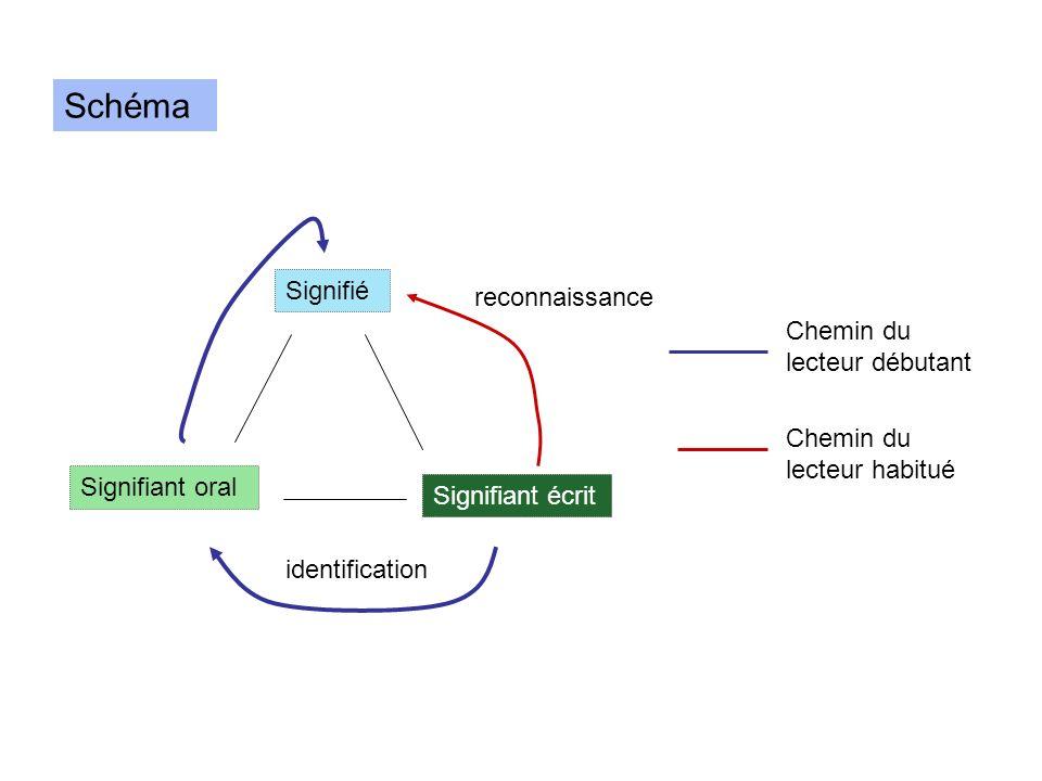 Schéma Signifié Signifiant oral Signifiant écrit Chemin du lecteur débutant Chemin du lecteur habitué identification reconnaissance