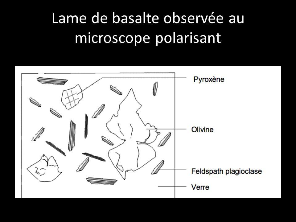 Lame de basalte observée au microscope polarisant