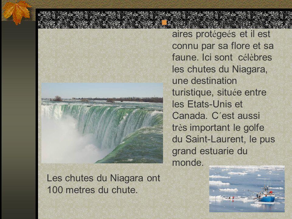 Canada a quarant-six aires prot é ge é s et il est connu par sa flore et sa faune.