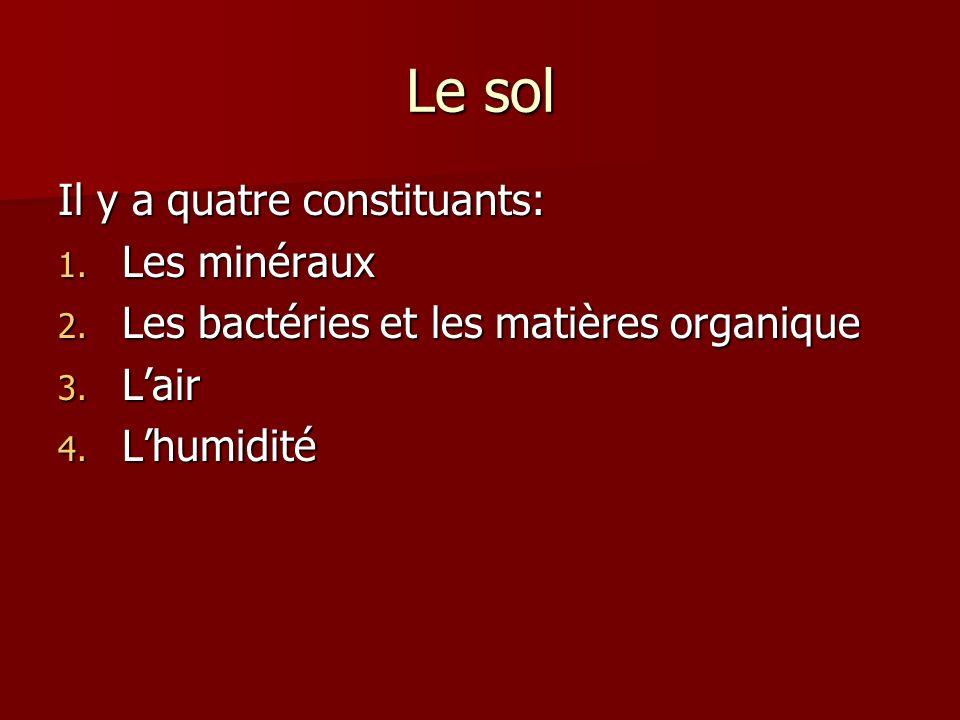 Le sol Il y a quatre constituants: 1. Les minéraux 2. Les bactéries et les matières organique 3. Lair 4. Lhumidité