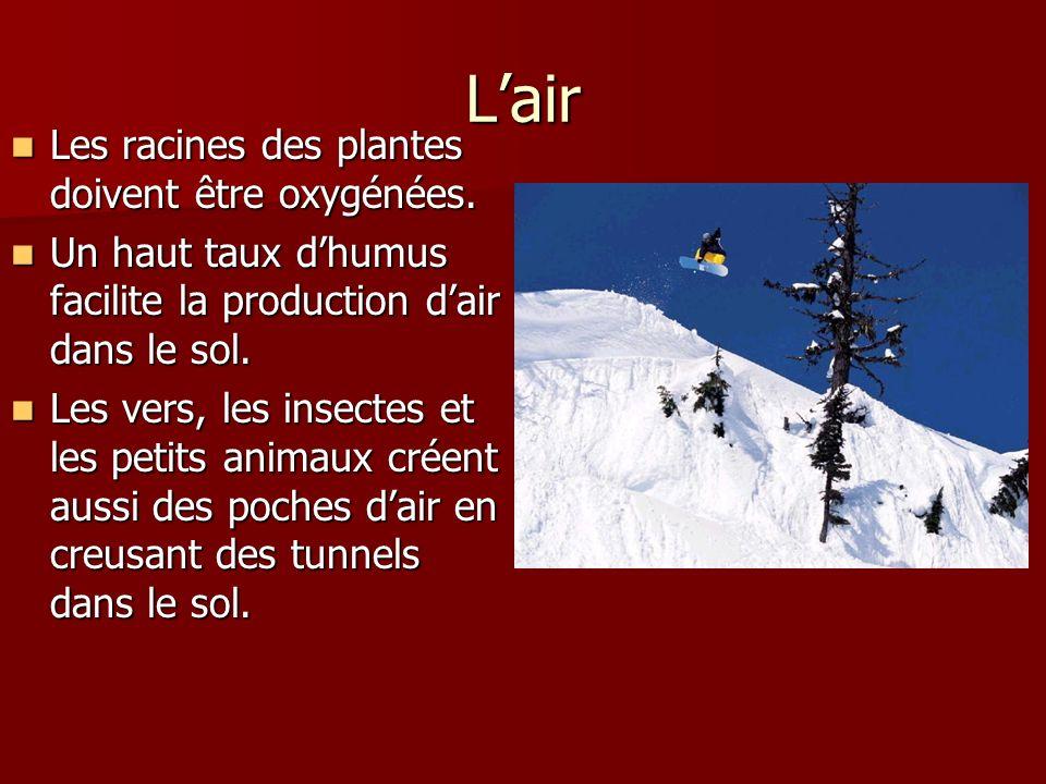 Lhumidité Leau dissout les substances nutritives du sol Leau dissout les substances nutritives du sol Elles sont ensuite absorbées par les racines des plantes.