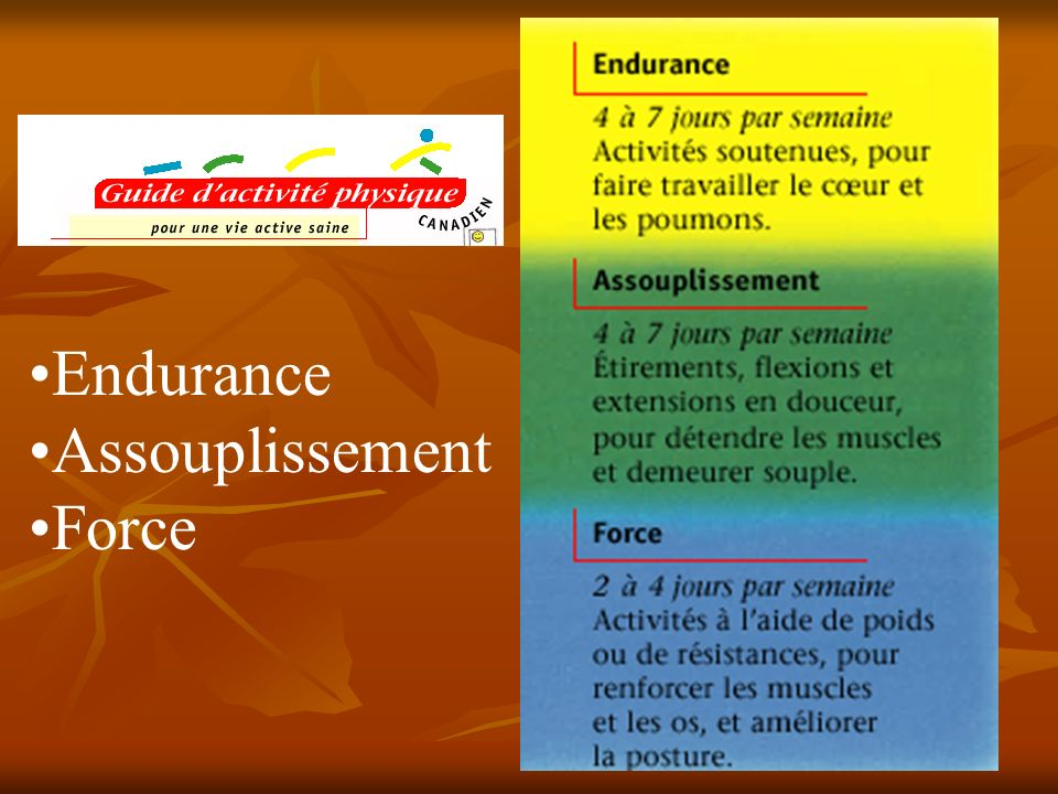 Endurance Assouplissement Force