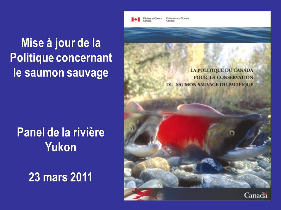 Mise à jour de la Politique concernant le saumon sauvage Panel de la rivière Yukon 23 mars 2011