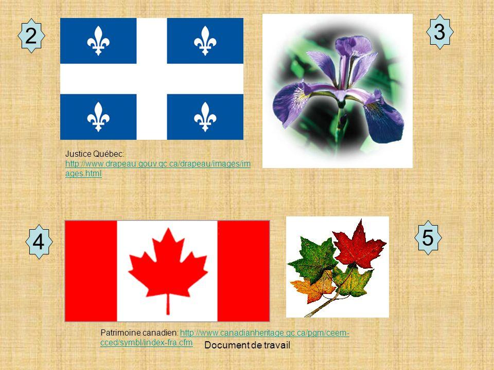 Document de travail 2 3 Patrimoine canadien: http://www.canadianheritage.gc.ca/pgm/ceem- cced/symbl/index-fra.cfmhttp://www.canadianheritage.gc.ca/pgm/ceem- cced/symbl/index-fra.cfm Justice Québec: http://www.drapeau.gouv.qc.ca/drapeau/images/im ages.html http://www.drapeau.gouv.qc.ca/drapeau/images/im ages.html 4 5