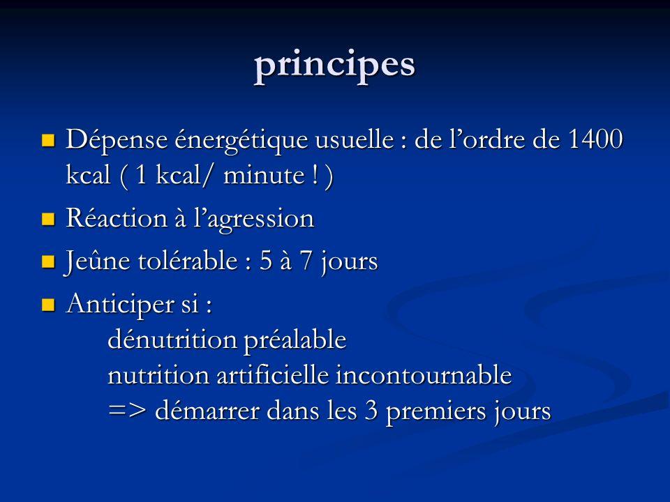 principes Dépense énergétique usuelle : de lordre de 1400 kcal ( 1 kcal/ minute .