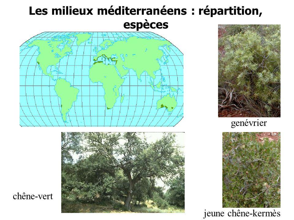 Les milieux méditerranéens : répartition, espèces carte genévrier jeune chêne-kermès chêne-vert 19