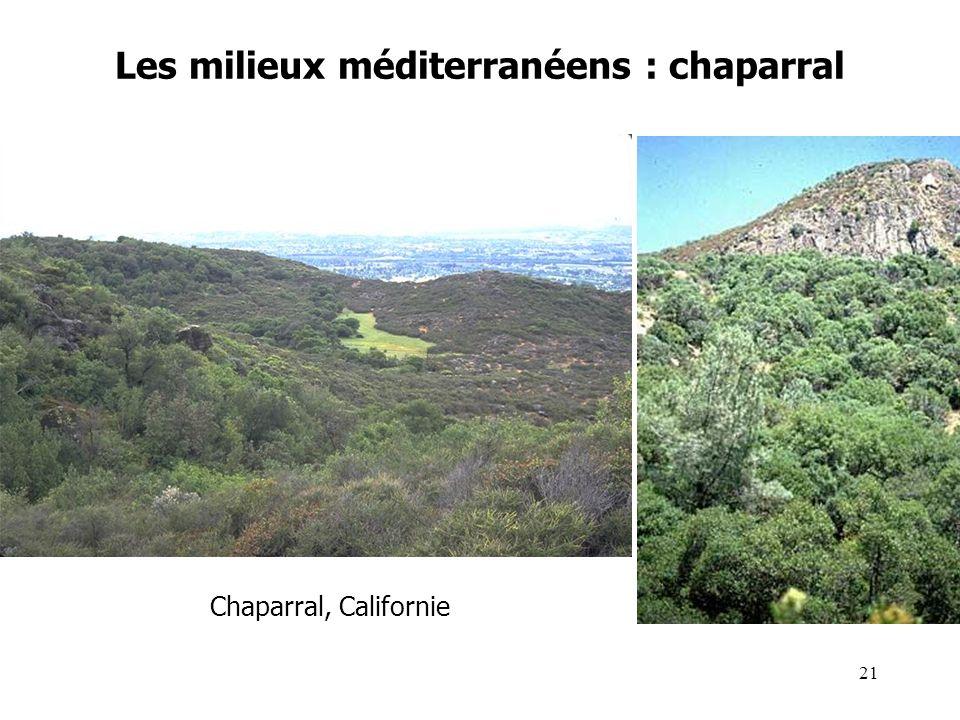 Les milieux méditerranéens : chaparral Chaparral, Californie 21