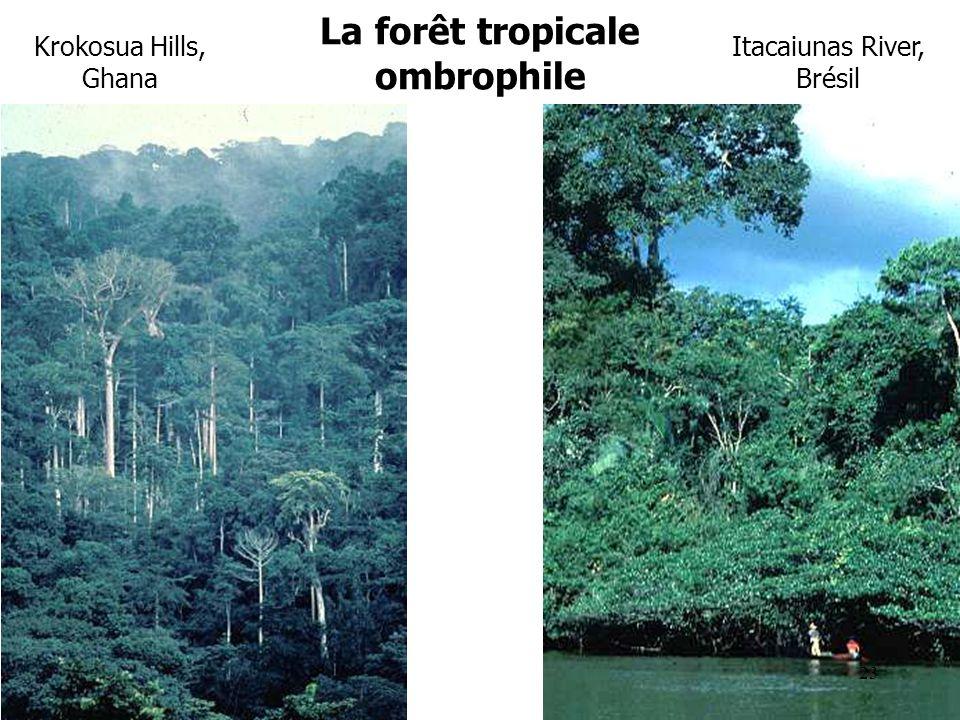 Itacaiunas River, Brésil Krokosua Hills, Ghana La forêt tropicale ombrophile 23