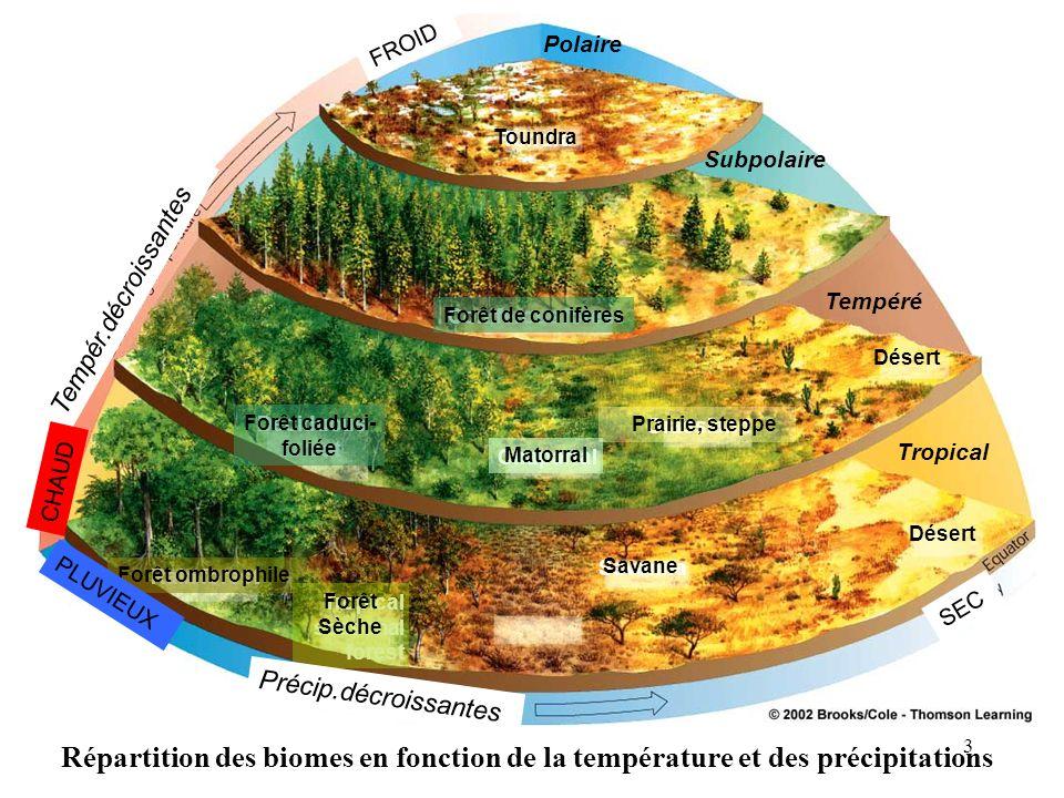 Répartition des biomes en fonction de la température et des précipitations Polaire Subpolaire Tempéré Tropical Désert Deciduous forest Forêt caduci- f
