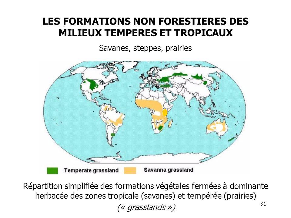 LES FORMATIONS NON FORESTIERES DES MILIEUX TEMPERES ET TROPICAUX Savanes, steppes, prairies Répartition simplifiée des formations végétales fermées à dominante herbacée des zones tropicale (savanes) et tempérée (prairies) (« grasslands ») 31