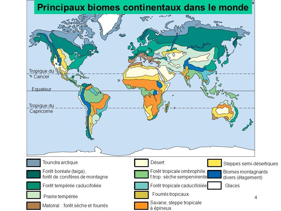 Principaux biomes continentaux dans le monde Matorral : forêt sèche et fourrés Prairie tempérée Forêt tempérée caducifoliée Forêt boréale (taiga), for
