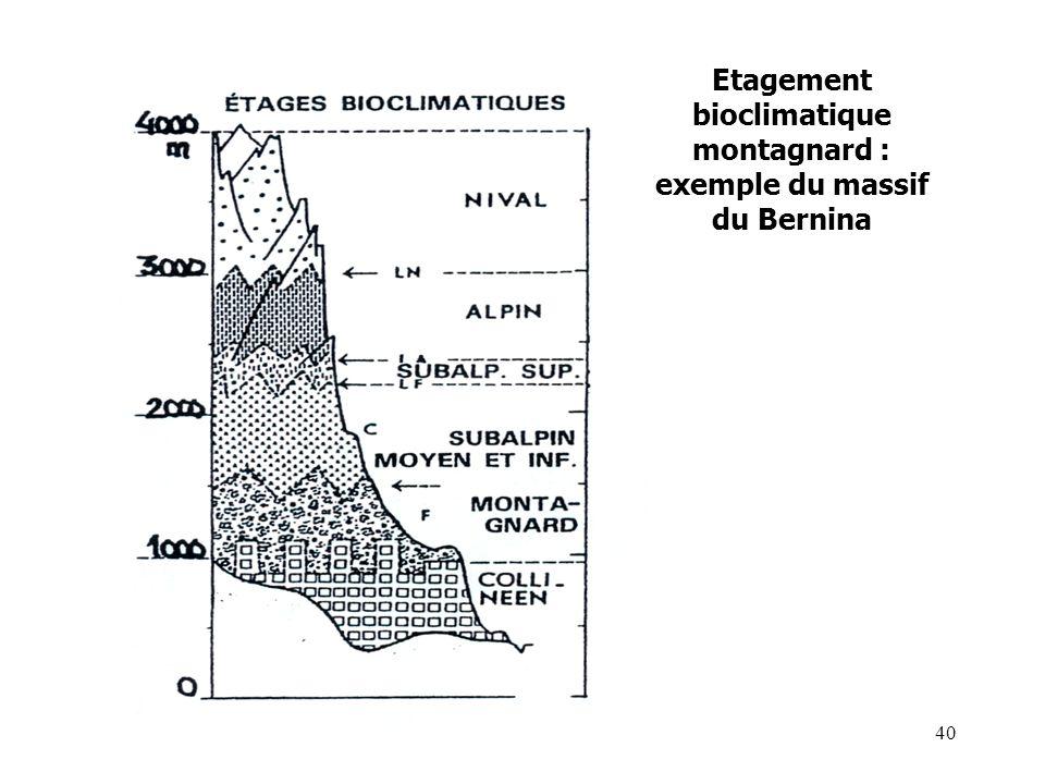 Etagement bioclimatique montagnard : exemple du massif du Bernina 40