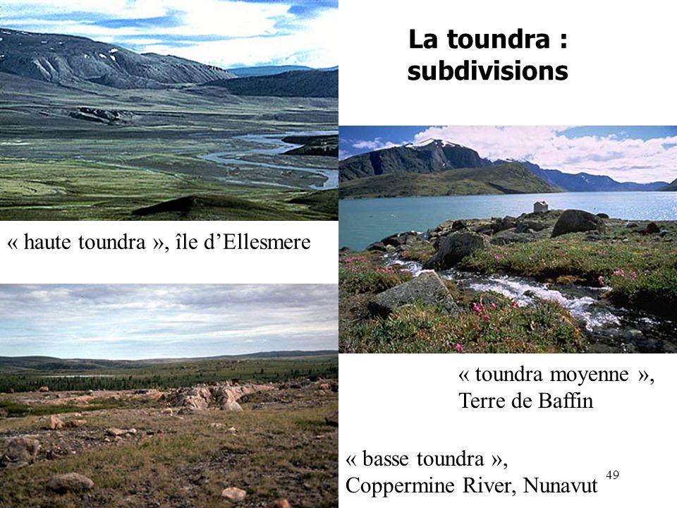 La toundra : subdivisions « toundra moyenne », Terre de Baffin « basse toundra », Coppermine River, Nunavut « haute toundra », île dEllesmere 49