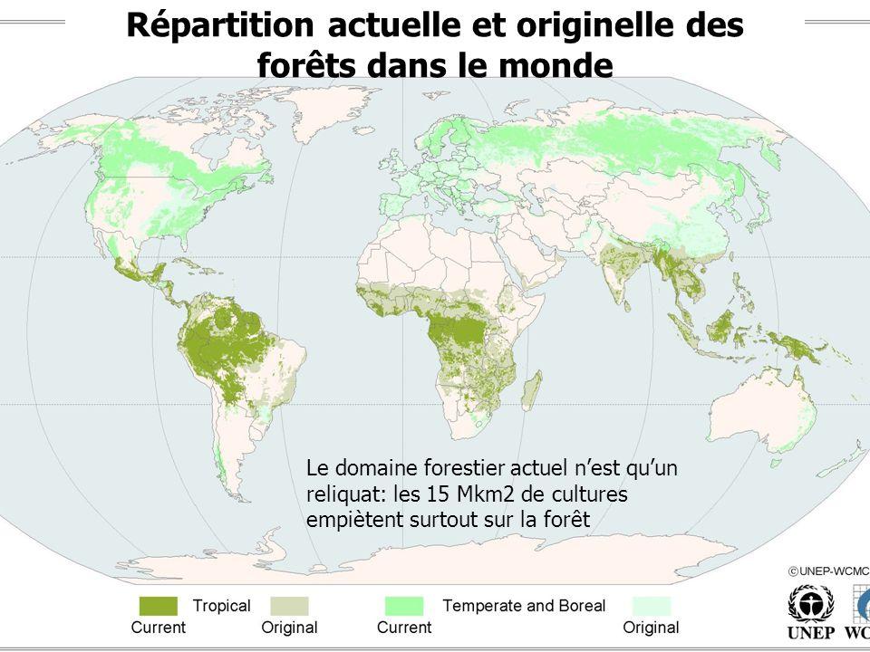 Répartition actuelle et originelle des forêts dans le monde Le domaine forestier actuel nest quun reliquat: les 15 Mkm2 de cultures empiètent surtout
