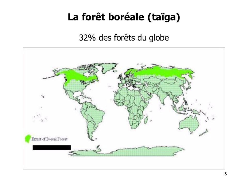 La forêt boréale (taïga) Climat : continental (été bref mais >10°C, hiver très froid) Géologie / Morphologie / Hydrographie : héritage glaciaire: sables, cailloutis, lacs, permafrost… Sols : pauvres (acides, peu fertiles : podzols) Végétation : forêt de conifères ; quelques feuillus résistants; tourbières Faune : Grands herbivores (caribous, rennes, …), carnivores (loups, renards,…), insectes 9