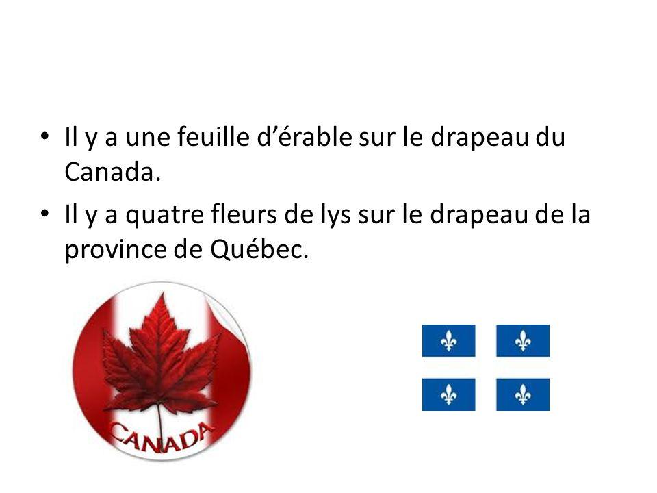 Il y a une feuille dérable sur le drapeau du Canada. Il y a quatre fleurs de lys sur le drapeau de la province de Québec.