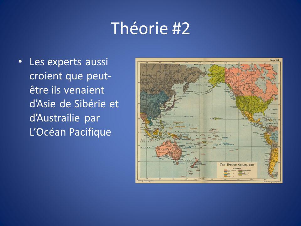 Théorie #2 Les experts aussi croient que peut- être ils venaient dAsie de Sibérie et dAustrailie par LOcéan Pacifique