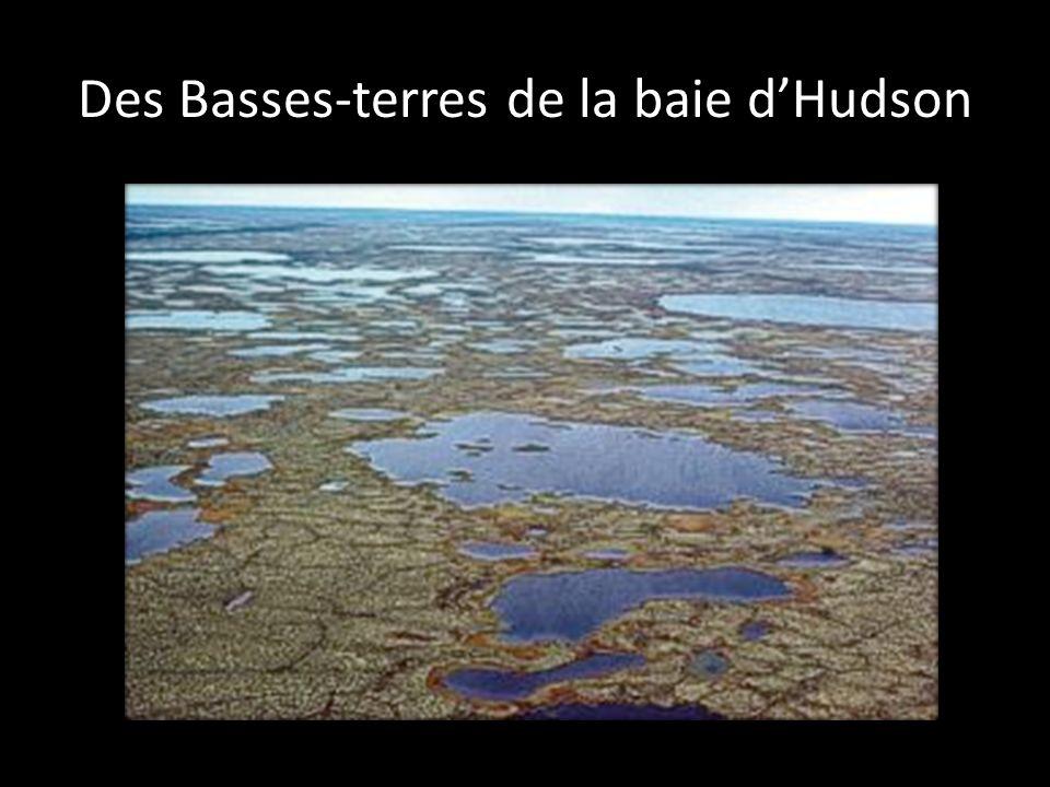 Des Basses-terres de la baie dHudson