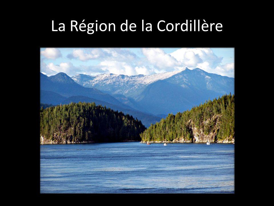 Cette région comprend le système montagneux du Pacifique et les montagnes Rocheuses.
