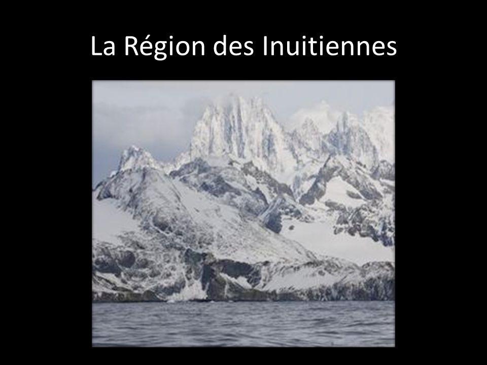 Située dans le Grand Nord Cest un région montagneuse qui compose de glacier et de champs de glace.