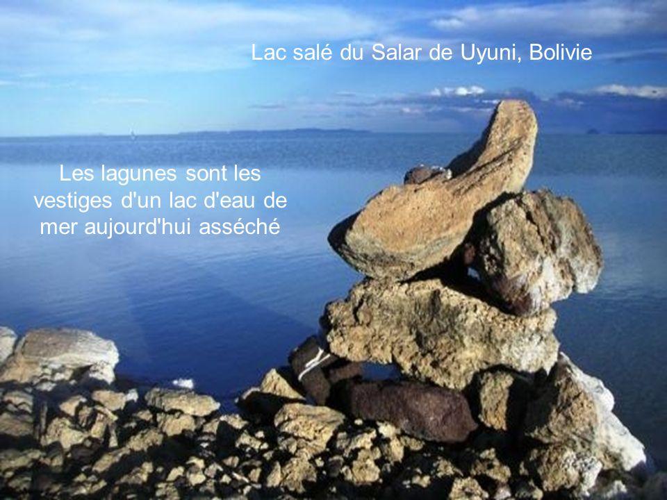 Lac salé du Salar de Uyuni, Bolivie Les lagunes sont les vestiges d un lac d eau de mer aujourd hui asséché