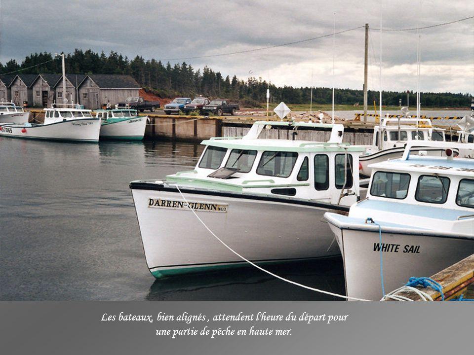 La pêche est une activité très importante à l'Île du Prince-Édouard, un ancien port de pêche avec ses quais et son entrepôt réfrigéré, le tout est tra