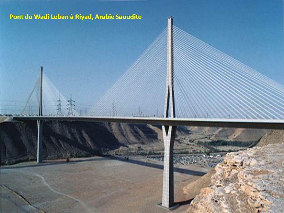 Pont de Rio Niteroi à Rio de Janeiro, Brésil