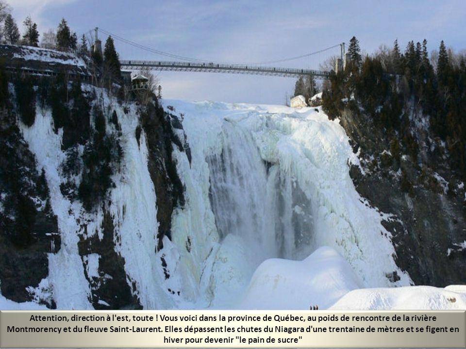 Le Canada, c'est l'appel du Grand Nord et des grands espaces. Ici, nous sommes à une centaine de kilomètres de l'Alaska, dans le sud du Yukon. C'est u