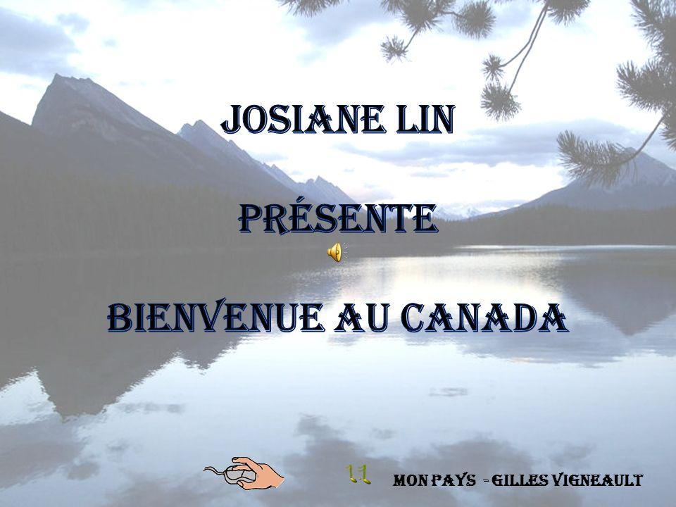 Les Mille-Îles sont un archipel sur la frontière entre les États-Unis et le Canada, dans le fleuve Saint-Laurent.