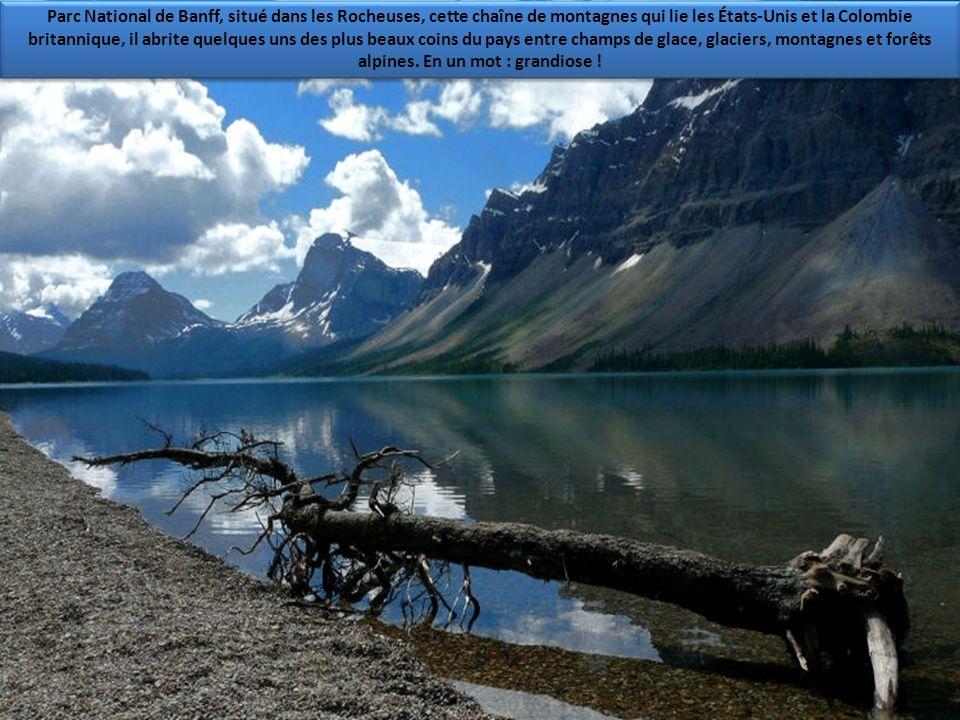 Parc National de Banff, situé dans les Rocheuses, cette chaîne de montagnes qui lie les États-Unis et la Colombie britannique, il abrite quelques uns des plus beaux coins du pays entre champs de glace, glaciers, montagnes et forêts alpines.